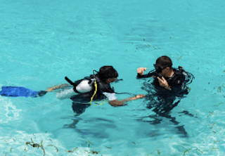 padi diving open dive
